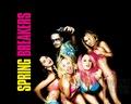 Spring Breakers [2013]