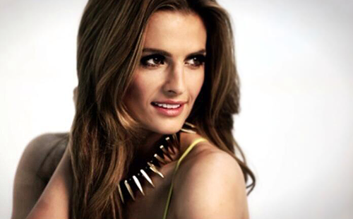 Castle wallpaper containing a portrait and attractiveness called Stana Katic
