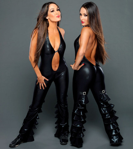 wwe divas images the bella twins hd wallpaper and