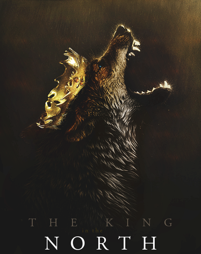 game of thrones wallpaper titled The KIng in The North