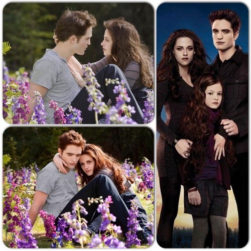 The Meadow and Renesmee (Mash up)
