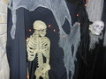 The Skeleton - halloween photo