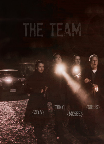 The Team