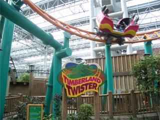Timberland Twister