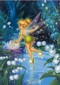 Tinkerbell - disney-fairies photo