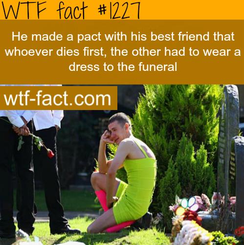 Random Gay Facts 118