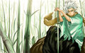 captain hitsugaya - bleach-anime wallpaper