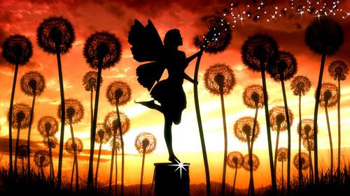 fairy キッス