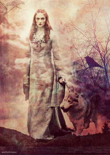 Sansa Stark & Lady