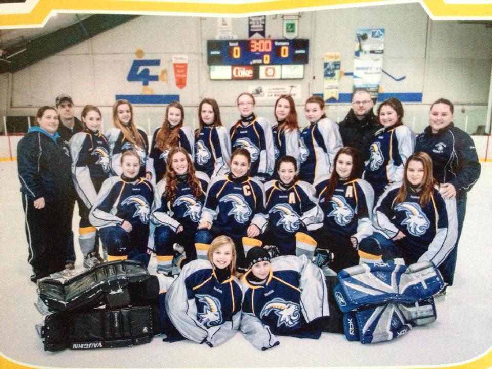 Girl Hockey Fans Girls Hockey Hockey Team