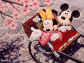 mickey-and-minnie - min wallpaper