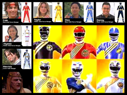power rangers wild force team!