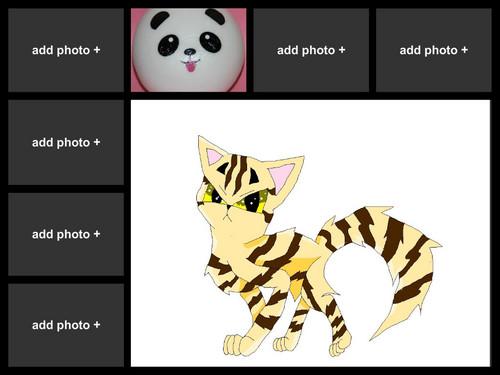 this is my kawaii panda bun