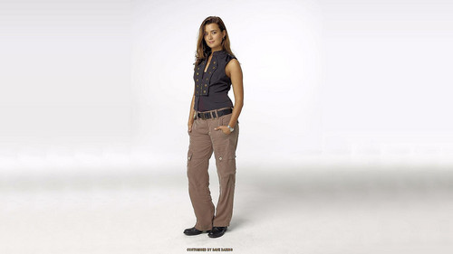 Cote de Pablo achtergrond possibly with tights, a legging, and a playsuit, boxpakje entitled achtergronden