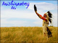 ★ Anishinaabeg ☆ - native-pride wallpaper