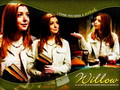 Willow - buffy-the-vampire-slayer wallpaper