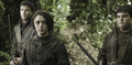 Hot Pie, Arya Stark &amp; Gendry - arya-stark photo