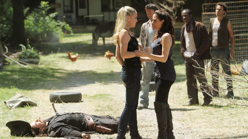 Bo & Tamsin - lost-girl Photo