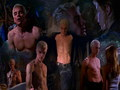 Buffy &amp; Spike - buffy-the-vampire-slayer wallpaper