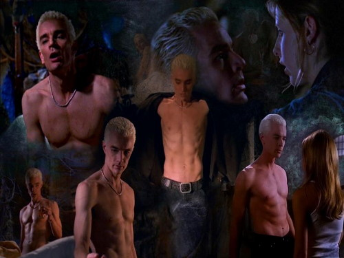 Buffy the Vampire Slayer wallpaper probably with a triceratops, a hunk, and a hot tub entitled Buffy & Spike