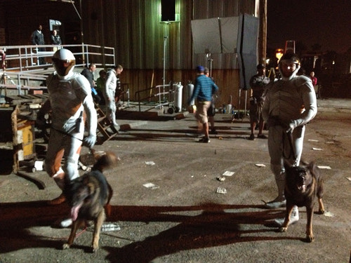 Catching Fire-Behind the scenes