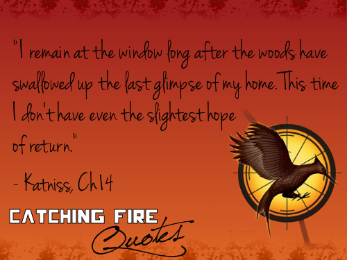 Catching Fire wallpaper possibly with a sign titled Catching Fire quotes