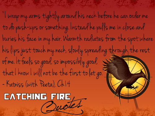Catching Fire wallpaper possibly containing a sign and anime titled Catching Fire quotes