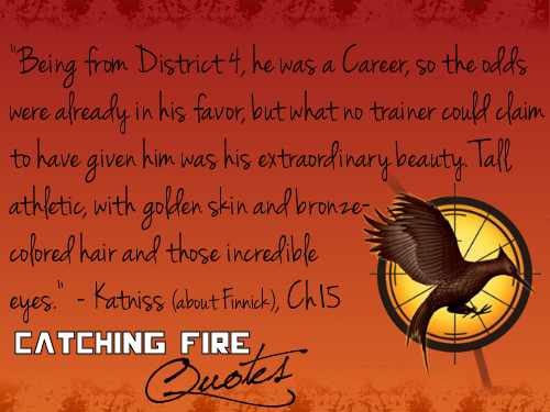 Catching Fire wallpaper probably containing a sign and anime titled Catching Fire quotes