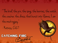 Catching Fire quotes