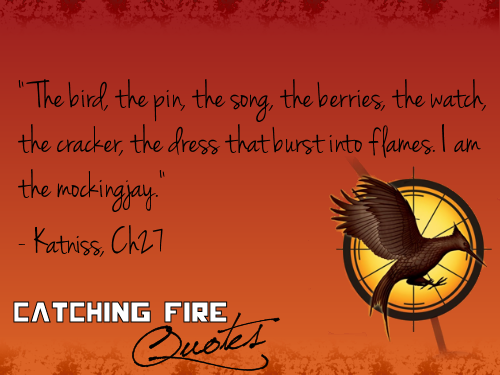 Catching Fire wallpaper possibly with anime titled Catching Fire quotes