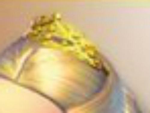 Clara's crown