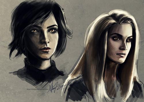 Cullen/Hale 팬 Art (by alicexz)