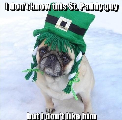 Funny Pug Dog St. Patrick दिन