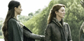 Catelyn Stark & Talisa - game-of-thrones photo