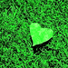 Green Heart - green icon