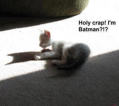 Im 蝙蝠侠