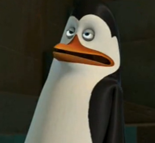 Kowalski's gonna sneeze
