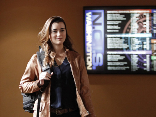 "Navy CIS 10x19 ""Squall"" episode stills"