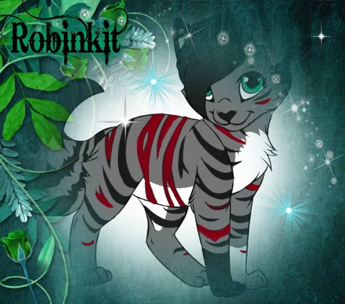 Make Your Own Warrior Cat! kertas dinding titled Robinkit