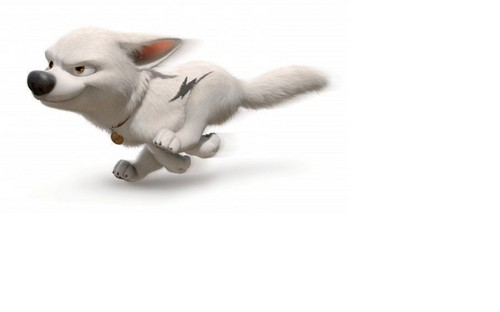 Disney's Bolt wallpaper possibly with a chihuahua called Run Bolt run!