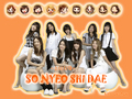 SNSD - snsd wallpaper