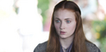 Sansa Stark  - sansa-stark photo