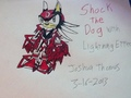 Shock the Dog (lightning effect) - shock-the-dog photo