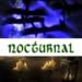 Skyrim icons - elder-scrolls-v-skyrim icon