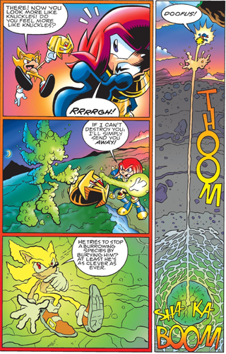 Super Sonic and Knuckles