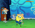 Spongebob Schwammkopf  - spongebob-squarepants wallpaper
