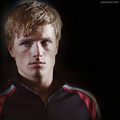 THG Fan Art - the-hunger-games fan art