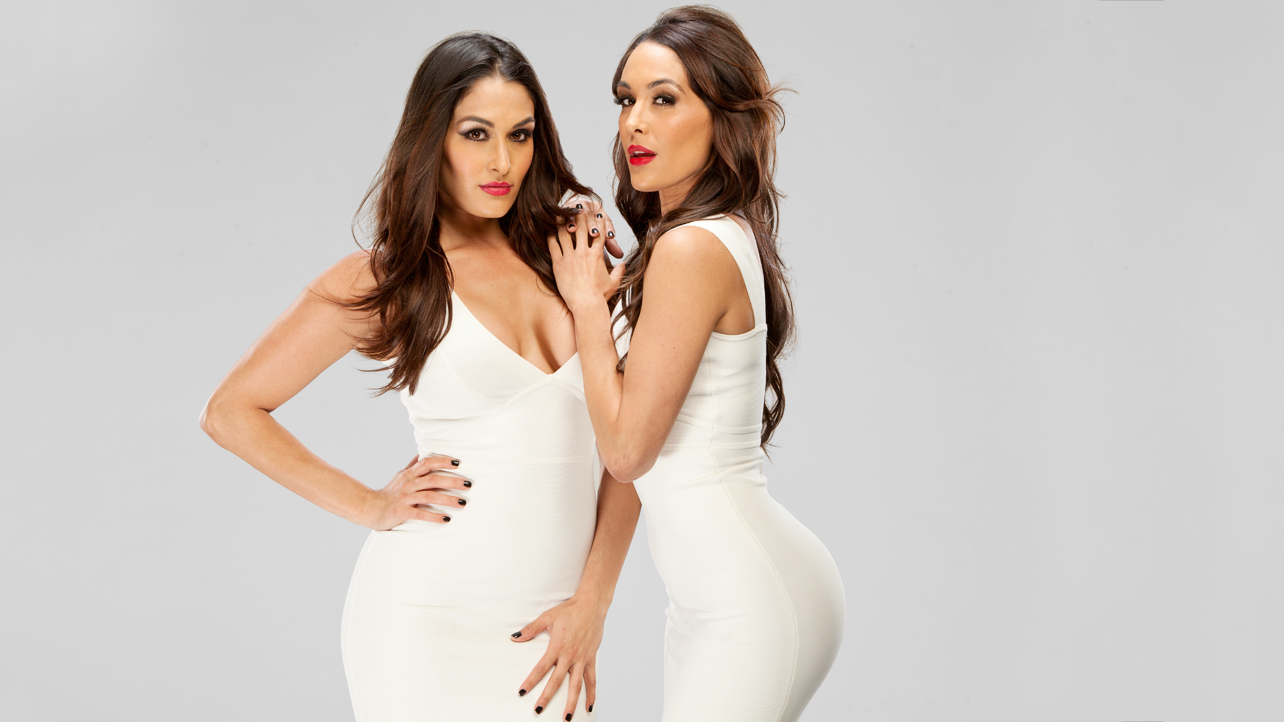 the bella twins wwe divas photo 33937573 fanpop