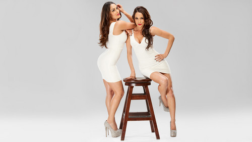 Diva WWE kertas dinding titled The Bella Twins