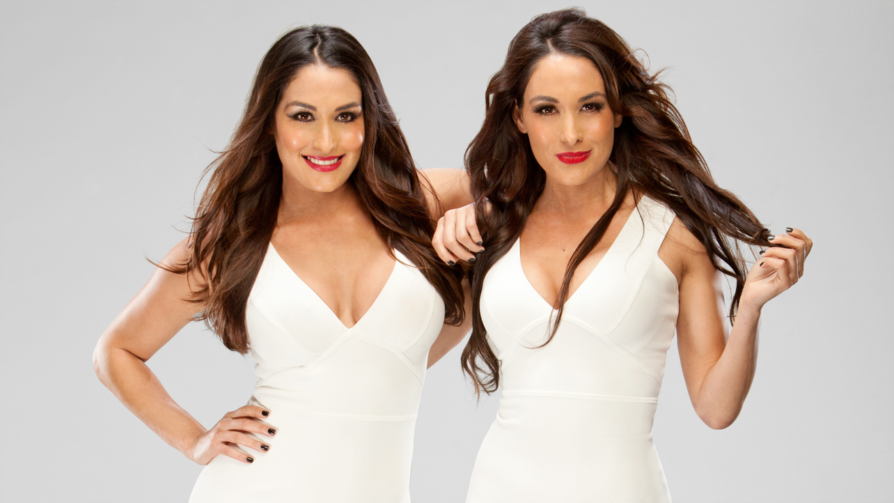 the bella twins wwe divas photo 33937599 fanpop